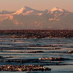 Turnagain Arm Sea Ice | Alaskafoto - Alaska aircraft portrait photographer & Alaska photography