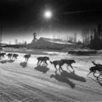 1987 Butcher McGrath | Alaskafoto - best Environmental portrait & Alaska portrait photographers