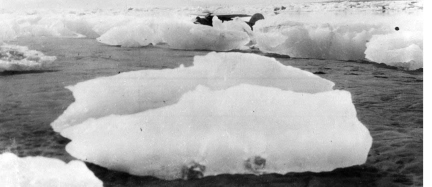 The Lockheed Vega Taku, NC102W is shown sitting between ice chunks in Icy Bay,Alaska July 13, 1930.