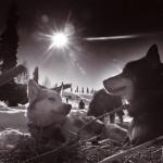 Natural Alaska photography | Alaskafoto - Environmental portrait & Alaska portrait photographers