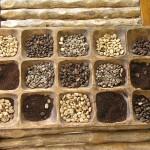 Coffee types raised at El Roble   Alaskafoto - Alaska Aircraft photography & Alaska Air Cargo photography