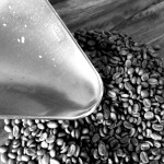 Coffee beans at El Roble | Alaskafoto - Best Alaska photography & portrait photographers Alaska