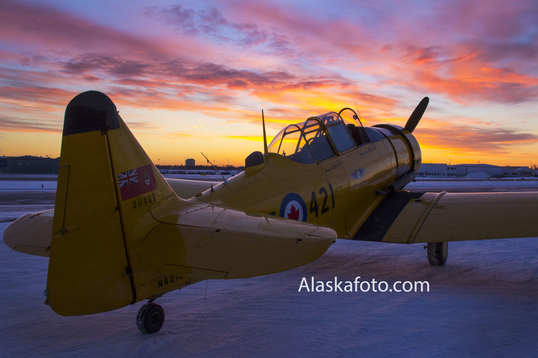 Commerative Air Force Harvard Trainer against a sunset.